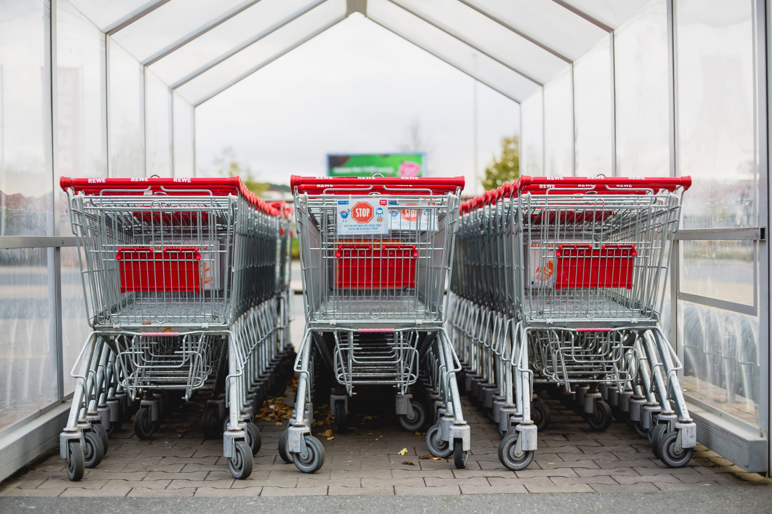 gray and red shopping carts